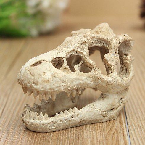 dragon skull model