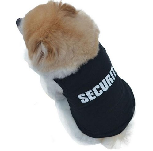 bodyguard dog