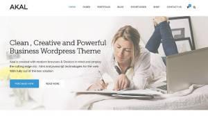 akal -czysty szablony firmowy WordPress