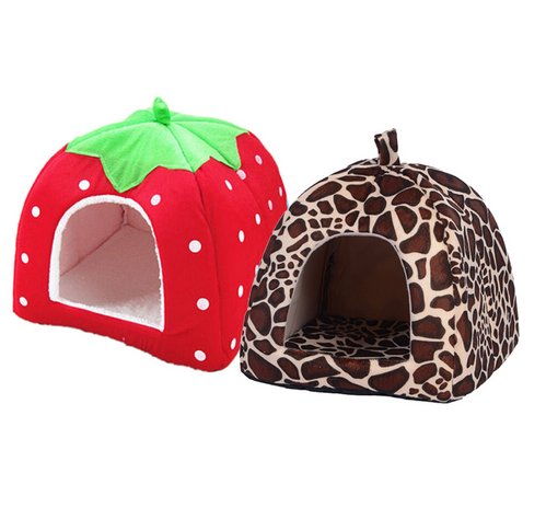 dog strawberry kennel