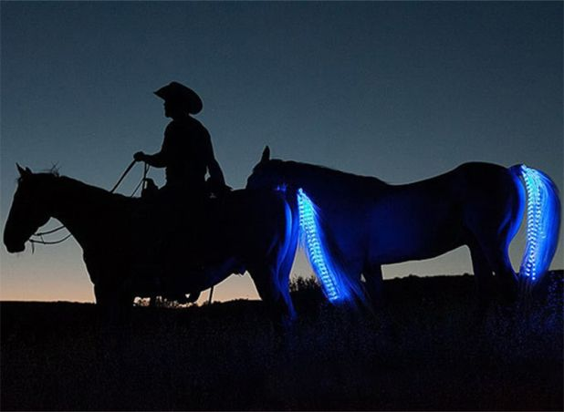 led chain for tail highlighting aliexpress