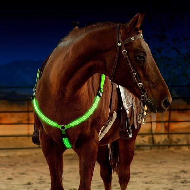 LED Breastplate for aliexpress horse