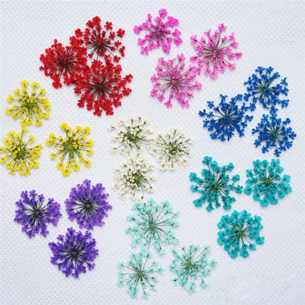 Aliexpress dried flowers
