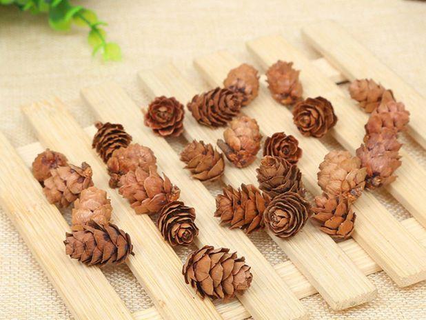 aliexpress pine cones
