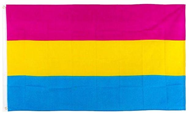 omnisexuality flag