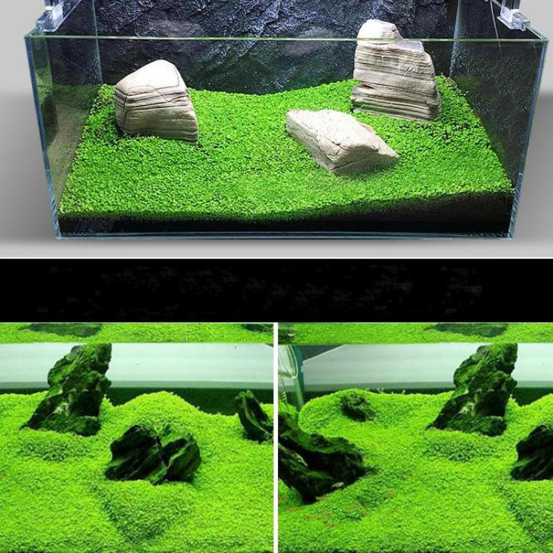 artificial plants aquarium aliexpress