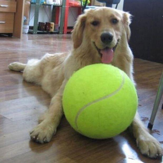 aliexpress giant tennis ball