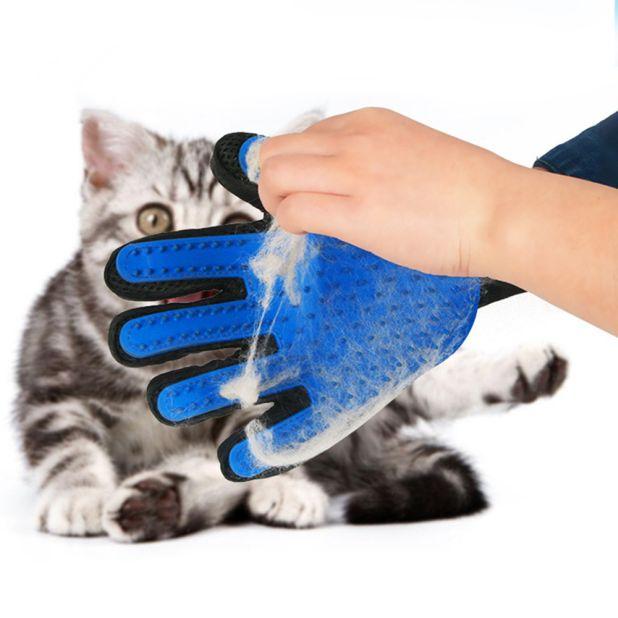 aliexpress glove to coat