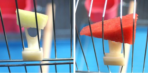 aliexpress food holder