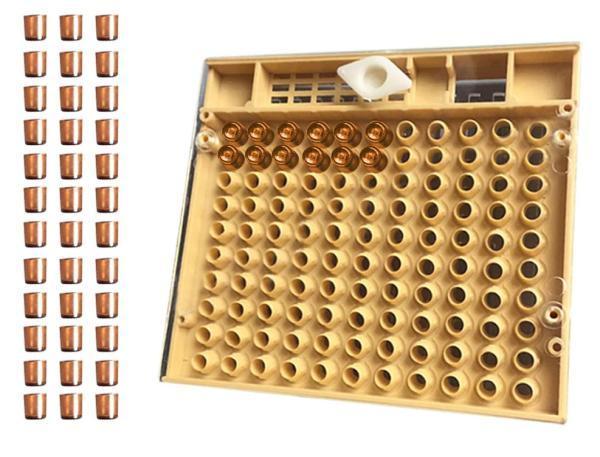 bee breeding set